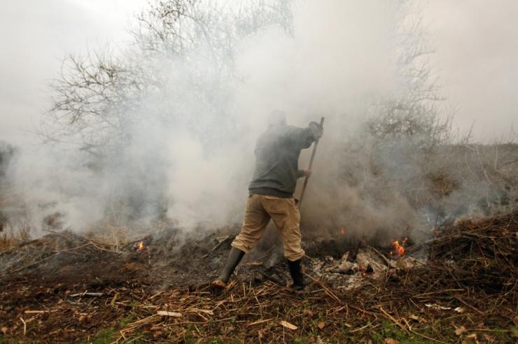 põletamine mürgid